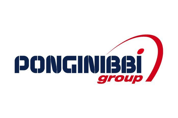 Ponginibbi Group
